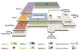 Retail Floor Plan Creator Museum Floor Plan Design Google Search Corporate Office