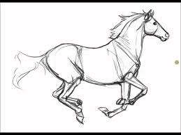 printable pictures realistic horse coloring pages 58 for gallery