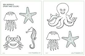 sea animals printable templates u0026 coloring pages firstpalette