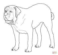 download coloring pages bulldog coloring pages bulldog coloring