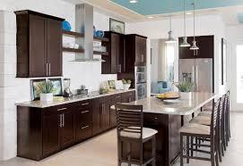 Kitchen Cabinet Decor Ideas by Kitchen 4 Fresh Espresso Kitchen Cabinets On Home Decor