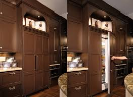 lovely built in u0027fridge home kitchens pinterest