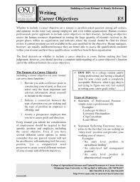 Entry Level Position Cover Letter Tally Clerk Cover Letter