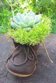 275 best planter ideas 1001 gardens images on pinterest