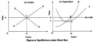 Short Run Equilibrium under Perfect competition