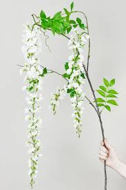 Wisteria Home Decor by Wisteria Flowering Branch 69