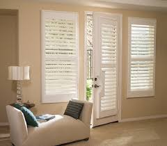window treatment for french doors dragon fly