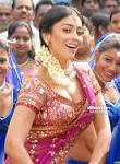 Desi Shotz: Shriya bending down to show boobs in latest stills!!!