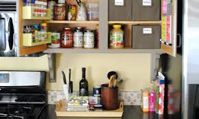 Shelf Kitchen Cabinet Cabinet Cabinet With Doors And Shelves Extraordinary Buy Storage