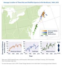 Map Of Northeast United States by Climate Change Indicators Marine Species Distribution Climate