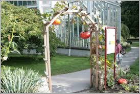 creative wooden gate with plants growing on it for backyard