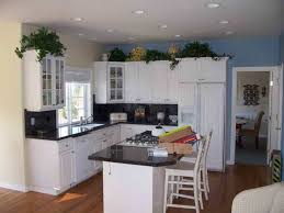 Painting Kitchen Cabinets Blue White Painted Kitchen Cabinets Photos Cool Kitchen Cabinets