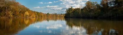 thanksgiving foto congaree national park u s national park service
