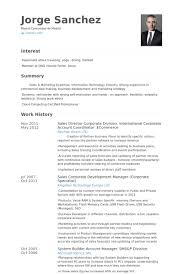 Ecommerce Resume Sample by Account Coordinator Resume Samples Visualcv Resume Samples Database