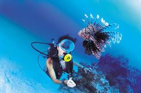 Plongée sous-marine.photos
