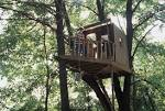 treehouse-building-tips1.jpg
