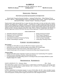 Business Consultant Resume Template   Formsword  Word Templates     WorkBloom