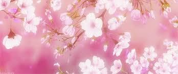 QD6-001: เก็บดอกไม้ Images?q=tbn:ANd9GcR10On7vw42YW5Rt4yjrAxKczfybq3TfXGBtL5eJIDUlzi0VLwwig