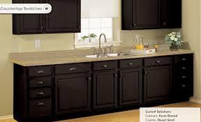 Kitchen Cabinet Refinishing Kits Kitchen Cabinet Stain Kit Video And Photos Madlonsbigbear Com