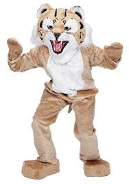 tiger halloween costumes wildcat mascot costume