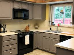Replacing Kitchen Cabinets Doors Cost Of Replacing Kitchen Cabinet Doors Choice Image Glass Door
