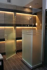 Interior Frameless Glass Door by Etched Glass Shower Doors Furniture Ideas