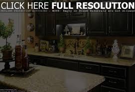 100 kitchen themes ideas elegant interior and furniture