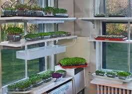microgreen garden indoor grower u0027s guide to gourmet greens light