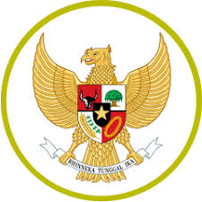 Indonesia national football team