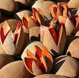 Mamey fruit: Mexico's sweet winter treat : Mexico Cuisine
