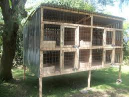 chicken coop plans in kenya 1 rabbit hutch plans rabbit hutch
