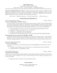 Resume Writing Samples  resume   free sample template cover letter     happytom co