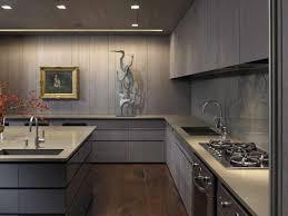 Kitchen Design Software Download Uncategorized Apartments Free House Remodeling 3d Software For