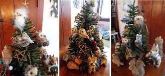 a rolling crone confessions of a christmas tree nut the sequel