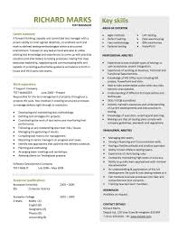 Retail Professional Summary 100 Test Lead Resume Test Manager Resume Sample Computer
