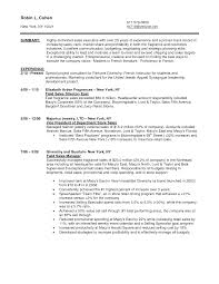 Sample Resume For Retail Manager by Resume Sample Of Sales Manager Free Resume Example And Writing