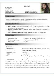 Resume Format Doc For Freshers  resume format for freshers of mca     Perfect Resume Example Resume And Cover Letter