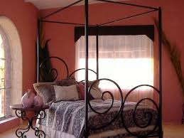 bed ideas appealing wrought iron canopy bed frame and round