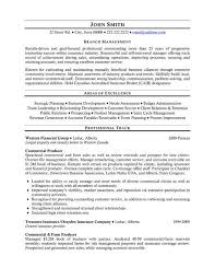 Sample Resumes For Professionals by 36 Best Best Finance Resume Templates U0026 Samples Images On