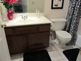 Budget Bathroom Ideas Charming Remodeling Bathroom Ideas On A Budget With 5 Budget