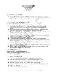 Summary Sample Resume by Developer Resume Example
