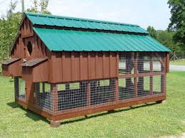 build your own chicken coop nice photos of the building process