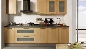 Best Spice Racks For Kitchen Cabinets Cabinet Laudable Ikea Cabinet Door Spice Rack Tremendous Ikea