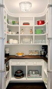 Glass Shelves Kitchen Cabinets Best Kitchen Shelves U2013 Horsetrials Org