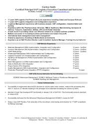 Sap Mm Sample Resumes by Sap Logistics Execution Consultant Cv