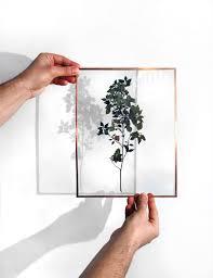 taille de cadre photo diy herbier sous verre et cadre en cuivre la pigiste blogue