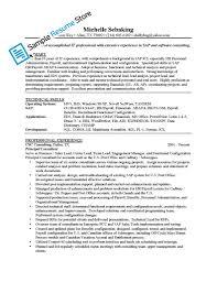 Sap Mm Sample Resumes by Ehs Resume Resume Cv Cover Letter