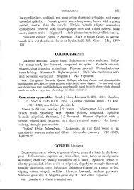 Sample Investment Banking Analyst Resume Herbarium Jcb