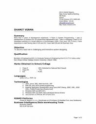 Executive Format Resume Template Resume Examples Resume Template