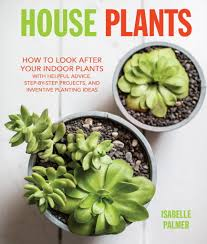 garden book review u0027house plants how to look after your indoor